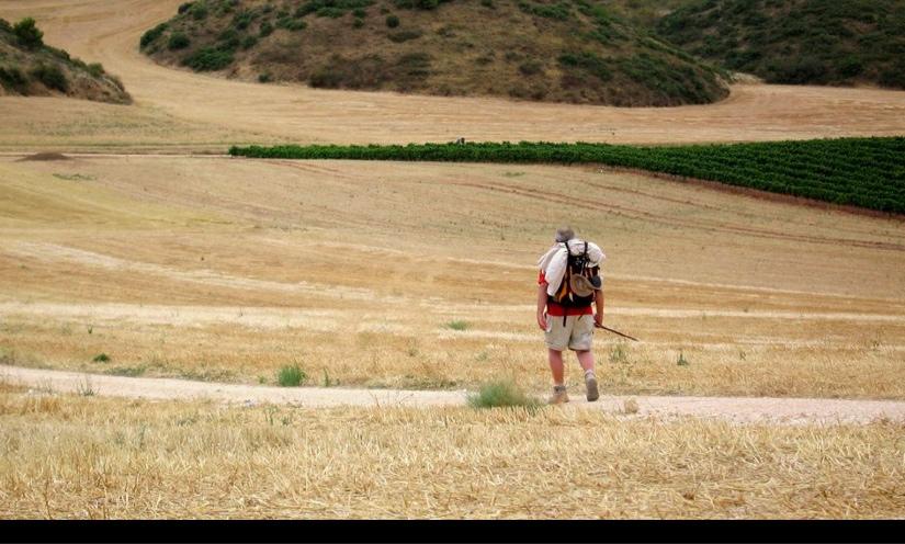 Pilgrim on the road